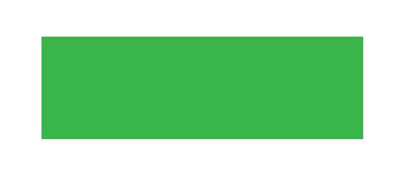 Association québécoise de l'industrie de l'échafaudage et de l'accès